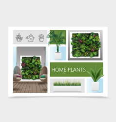 realistic home plants composition vector image