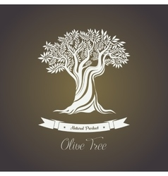 Tree with branches of olive oil berry vector image vector image