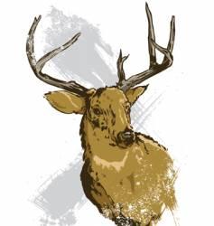 deer illustration vector image vector image