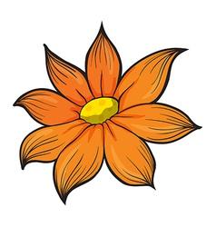An orange flower vector