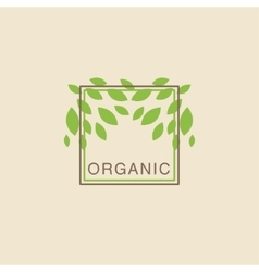 Double Frame With Leaves From Above Organic vector image vector image