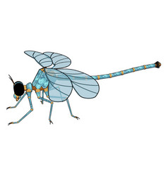 3d model dragonfly on white background vector image