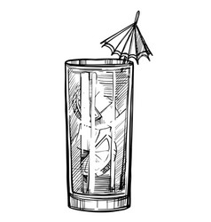 Alcoholic cocktail hand drawn sketch vector