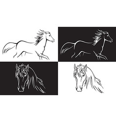 Horse on white and black background vector