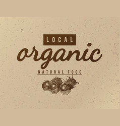 Local organic natural food background vector