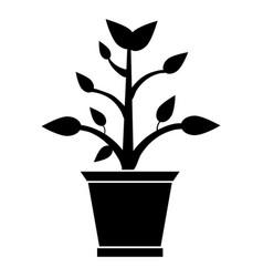 Pot plant garden pictogram vector