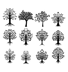 black tree silhouette collection vector image vector image