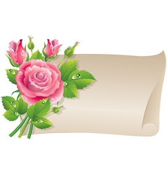 Roses scroll vector image