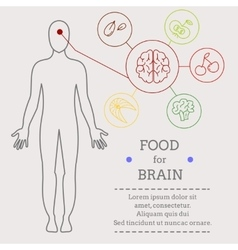 Food for brains vector image vector image