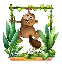 A beaver climbing vector image