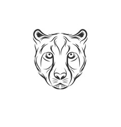cheetah head designs vector image