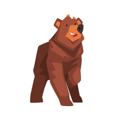 Cute brown bear wild forest animal character vector