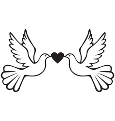 Pair of doves with heart vector