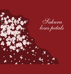 sakura greeting card a lush cherry branch with vector image