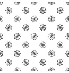top view calendula pattern seamless vector image