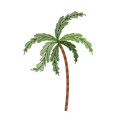 color silhouette with palm tree vector image