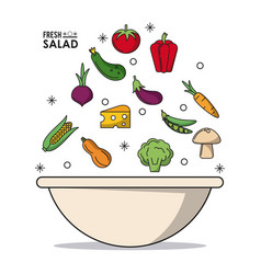 colorful poster of bowl fresh salad with vector image