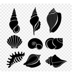 set of seashells silhouettes vector image