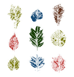 colored leaves stamps variants vector image