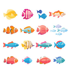Colorful aquarium fish set isolated vector