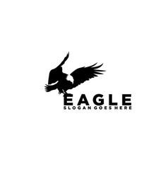 silhouette eagle hawk falcon logo design vector image