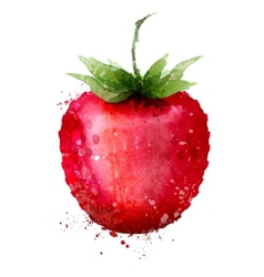 Strawberry logo design template Berry or vector image