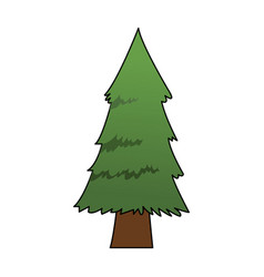 tree icon image vector image