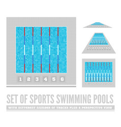set of sports swimming pools with different number vector image