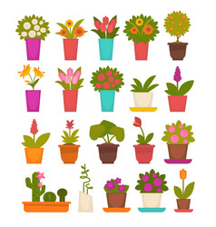 Assortment of different flowers vector