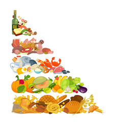 assortment of different food vector image