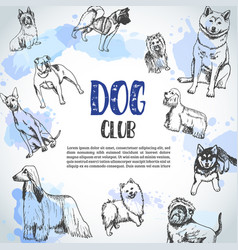 Background with hand drawn dogs breeds sketch of vector