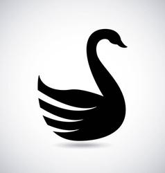 Swan design vector