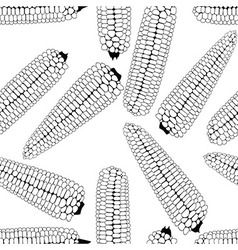 Corn seamless food background isolated cob vector image