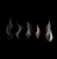 set of transparent smoke on a vector image