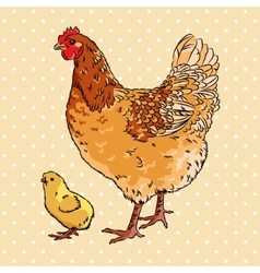 Realistic broody chicken and baby chick side view vector image vector image