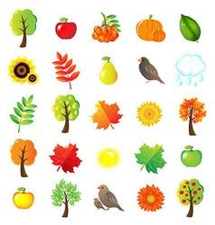 Autumn symbols and elements vector