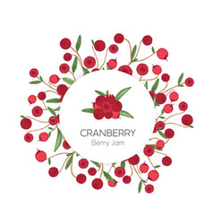 circular label or tag template with cranberries vector image