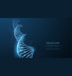 Dna abstract 3d polygonal wireframe dna molecule vector