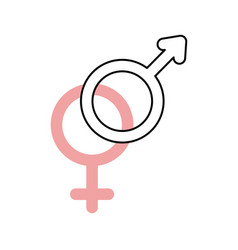 gender symbol of men and women on white background vector image