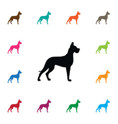 isolated hound icon whippet element can be vector image