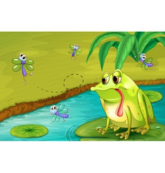 The sad frog in the pond vector image