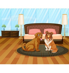 A house with two dogs vector image