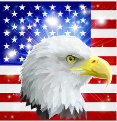 American eagle flag vector