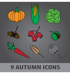 Autumn fruit icons eps10 vector