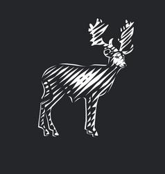 Beautiful deer vector