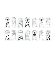 Cat paws cute hand drawn dog or kitten claws vector