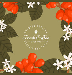 coffee shop poster banner vector image