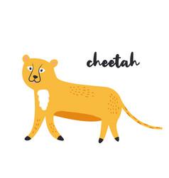 cute orange cheetah on white background vector image