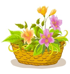 Flower basket vector