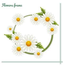 Flowers frame one vector
